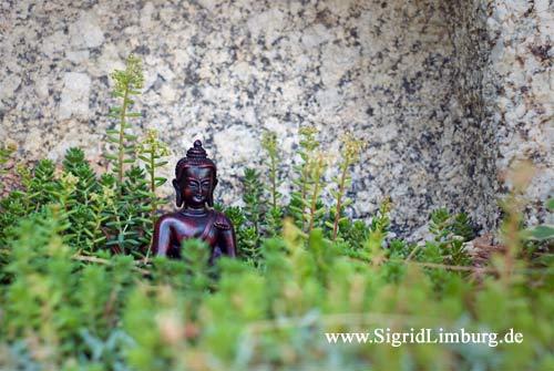 Foto Kleiner Buddha