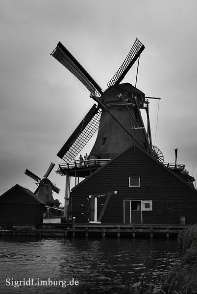 Fotografie Windmühle in Zaanse Schans © Sigrid Limburg