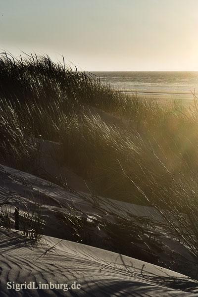 Fotografie Wellen und Düne © Sigrid Limburg