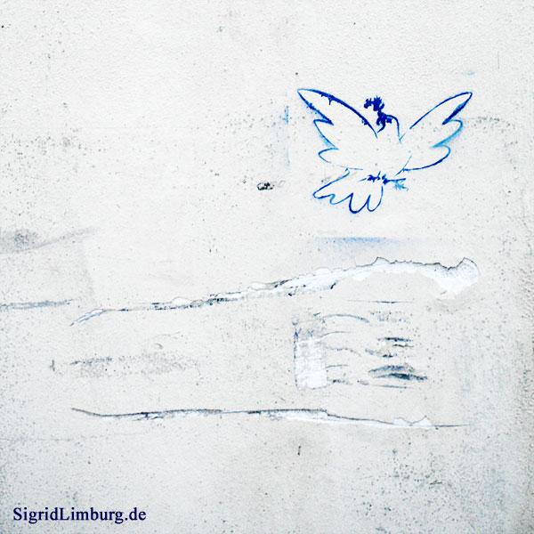 Fotografie Graffiti Friedenstaube © Sigrid Limburg